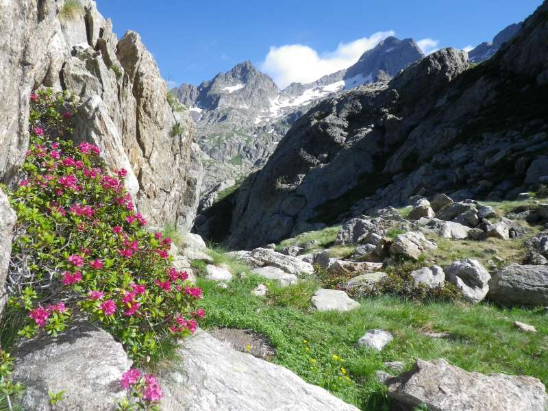 tour-Mont-Blanc