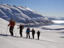 Norvège ski au milieu des fjords